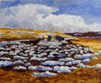 Melting Snow (pinto fields)